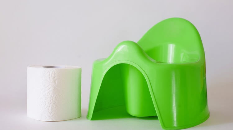 The 7 Best First Potty Chairs