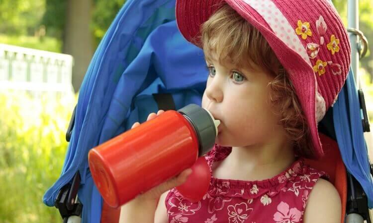 The 7 Best Portable Bottle Warmers