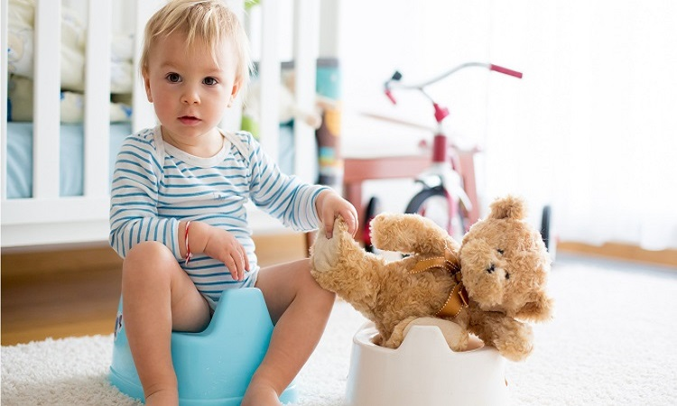 The 7 Best Potty Chairs For Boys